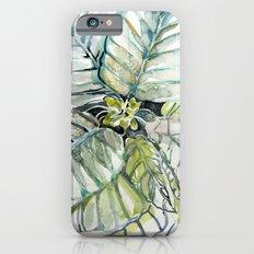 Poinsettia Watercolors iPhone 6 Slim Case