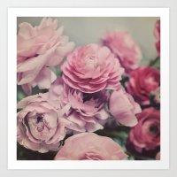 Quiet Ranunculus Art Print