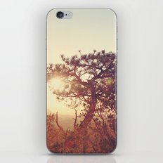 Bryce Canyon, A.M. iPhone & iPod Skin