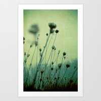 Finding Peace Within Art Print