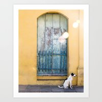 Waiting White Dog Art Print