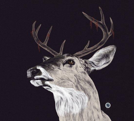 Deer (remindeer) Art Print