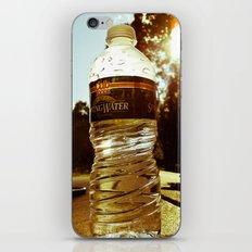 Modern Americana iPhone & iPod Skin
