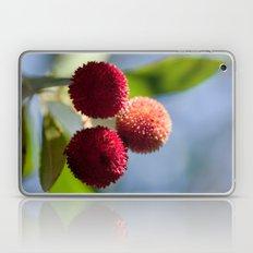 Strawberry tree fruits 8697 Laptop & iPad Skin