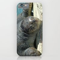 iPhone & iPod Case featuring Turtle Ashore by Elizabeth Tompkins