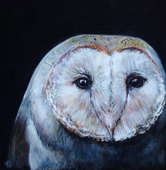 Dark Barn Owl Art Print