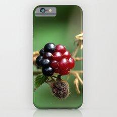 Berry Ripening iPhone 6 Slim Case