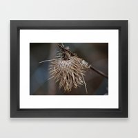 The Thistle Framed Art Print