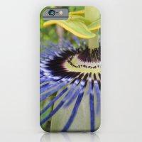 Passiflora iPhone 6 Slim Case