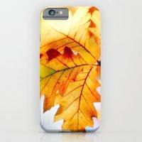 AUTUMN 6 iPhone 6 Slim Case