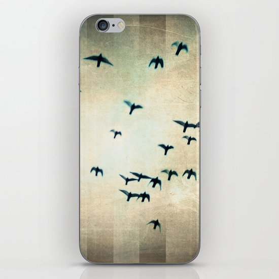 one for the birds iPhone & iPod Skin