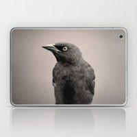 Goth Grackle Laptop & iPad Skin