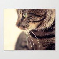 Kitty Love 2 Canvas Print