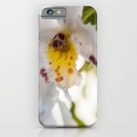 Orchid White iPhone 6 Slim Case
