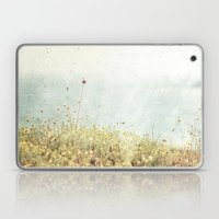 Houat #4 Laptop & iPad Skin