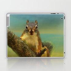 Little Red Squirrel Laptop & iPad Skin