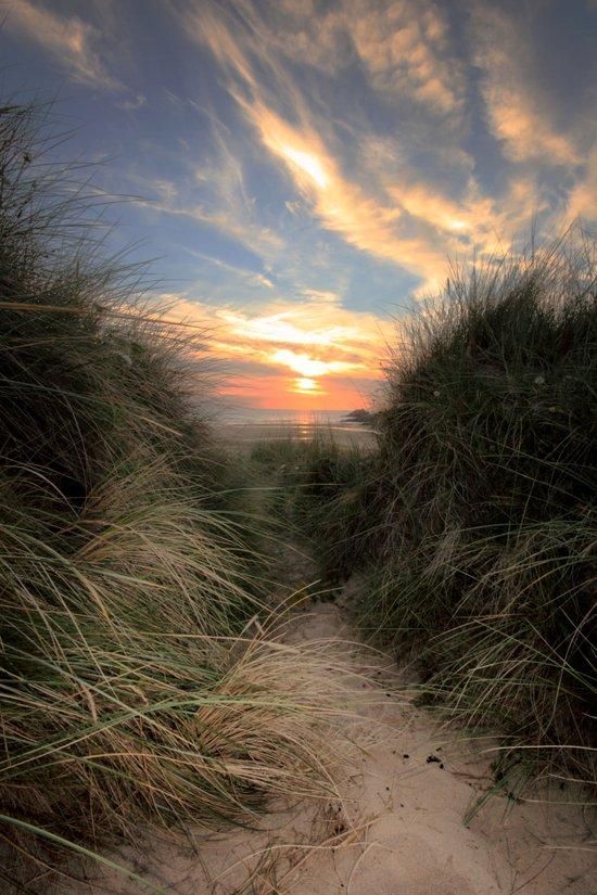 Sunset Through The Dunes Art Print
