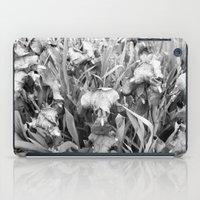 Colorless iPad Case