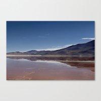 Natural Mirror Canvas Print