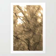 Treeage I - Sepia Art Print