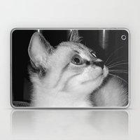 Curious Kitty Laptop & iPad Skin
