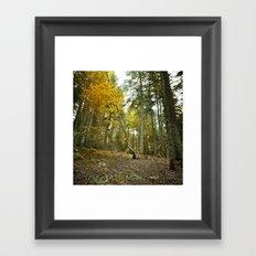 Bel Automne Framed Art Print