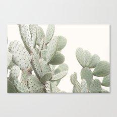 Cactus 4 Canvas Print