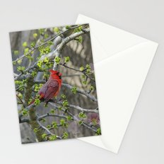 His Majesty the Cardinal Stationery Cards