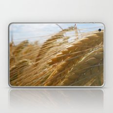 Fields of Gold Laptop & iPad Skin