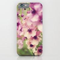 Everlight iPhone 6 Slim Case