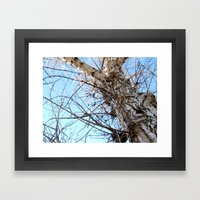 Tree Naked Framed Art Print