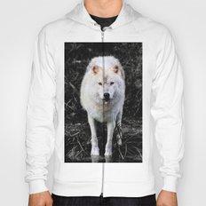 The Wolf Stare Hoody
