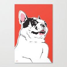 Boston Terrier Side-Eye Canvas Print