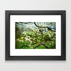 Surrounded by Possibility Framed Art Print