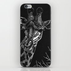 Giraffe iPhone & iPod Skin