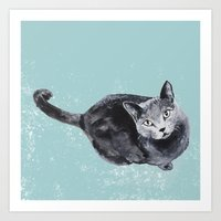 russian blue cat Art Print