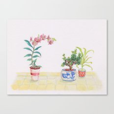 A flowery feeling Canvas Print