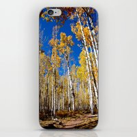 Enchiladas In The Trees … iPhone & iPod Skin
