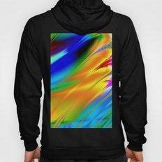 Digital art fractal colors Hoody