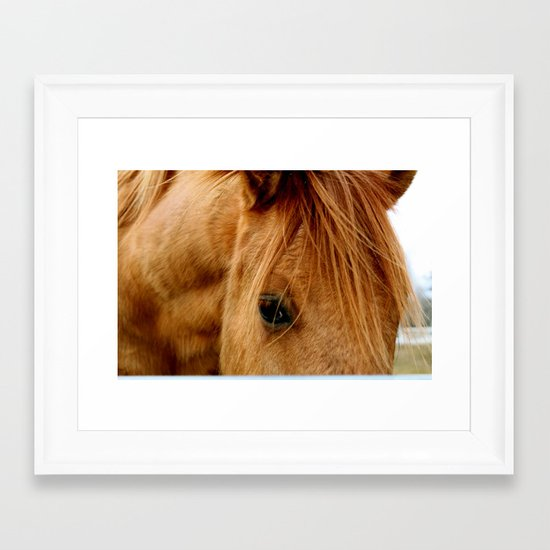 """""""a horse of a different color"""" Framed Art Print"""