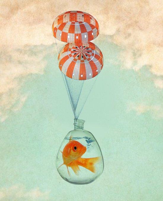 parachute goldfish Art Print