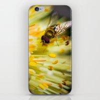 Poking Around iPhone & iPod Skin