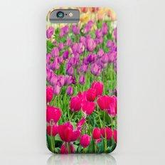 Fields of Color I, Woodburn Tulip Festival iPhone 6 Slim Case