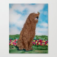 Chocolate Labradoodle and Butterfly Canvas Print
