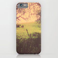 Hypnotic Fields  iPhone 6 Slim Case