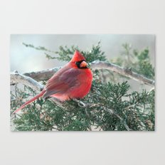 Red on Red (Northern Cardinal) Canvas Print