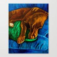 Sleepy Boy Canvas Print