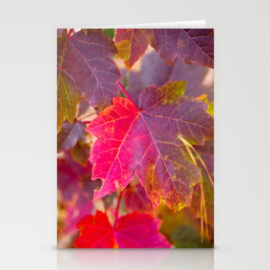Fall Party Stationery Card