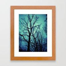 Blue Winter Trees Framed Art Print