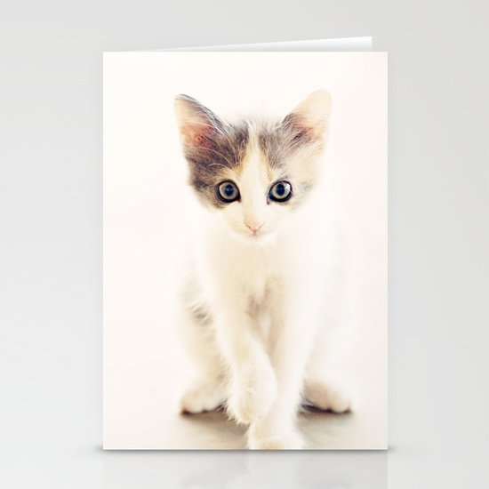 White and Grey Kitten Stationery Card